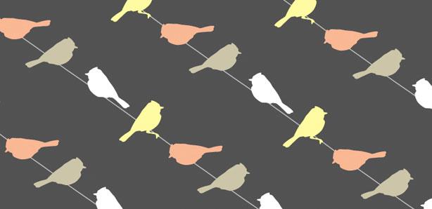 wilder_birds2